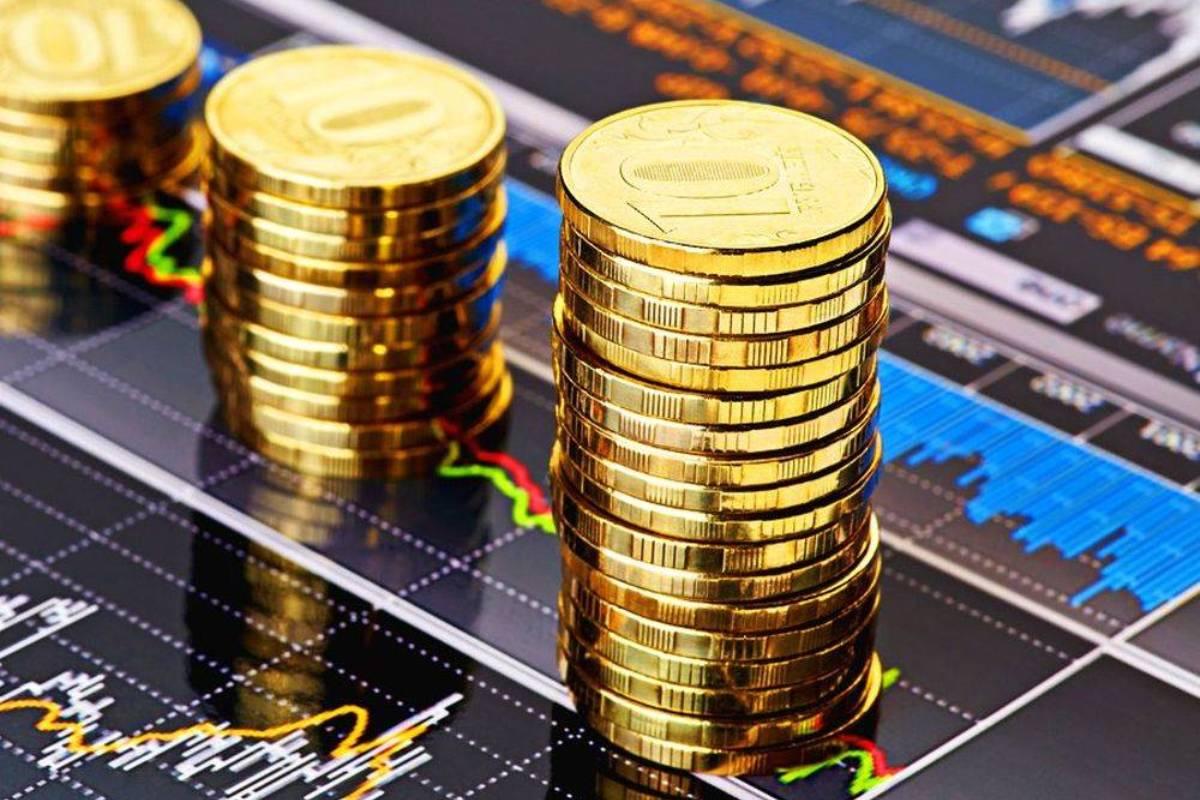 Оформление инвестиций в ИП