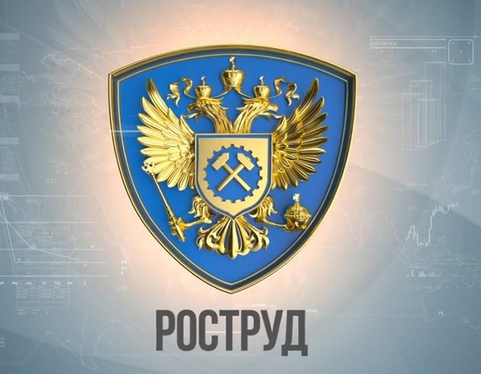 Федеральная служба России по труду и занятости